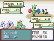 Pokemon Double Battle Game