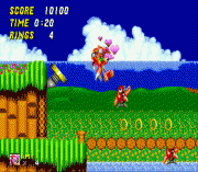 Amy Rose in Sonic the Hedgehog 2 sega Game