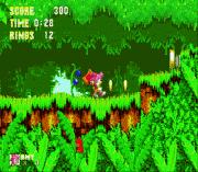 Sonic 3 & Amy Rose sega Game