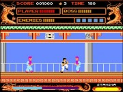 Kung Fu Master Flash Classic Game