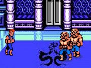 Double Dragon Fighters Game