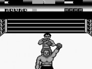 George Foreman's KO Boxing Game