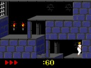 Prince of Persia on GBC Game