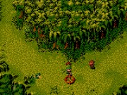 Cannon Fodder on GBC Game