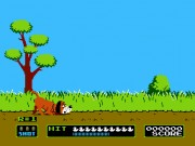 Duck Hunt on nes