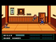 Double Dragon:The Sacred Stones