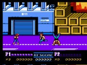 Double Dragon:The Revenge