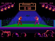 Best of the Best:Championship Karate on nes