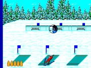Winter Olympics - Lillehammer '94 Game