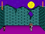 Alex Kidd in Shinobi World Game