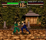 Vitua Fighter 2
