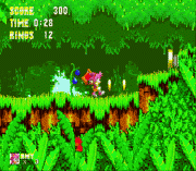Sonic 3 & Amy Rose Game