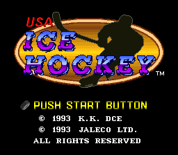 USA Ice Hockey (Japan) (Rev A)