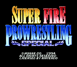 Super Fire Pro Wrestling Special (Japan)