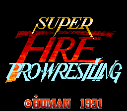 Super Fire Pro Wrestling (Japan)