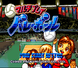 Multi Play Volleyball (Japan) game