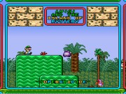Luigi and the Island of Mystery Game