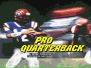 Pro Quarterback on Snes