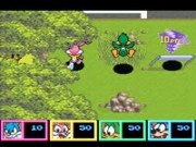 Tiny Toon Adventures - Wild & Wacky Sports