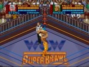 WCW Super Brawl Wrestling – Super Nintendo  PC